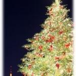 2015.12.21_christmastree